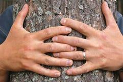 Abrace un árbol imagen de archivo libre de regalías