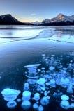 Abraham湖冬天 免版税库存图片