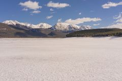 Snow Coverd Abraham Lake Royalty Free Stock Photography