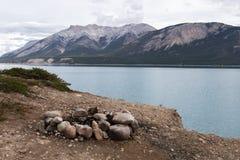 Abraham Lake Fire Pit Fotografering för Bildbyråer