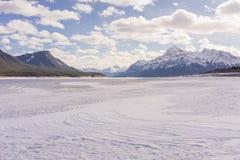Abraham Lake i vinter Arkivfoton