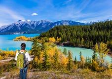 Abraham Lake no Canadá foto de stock