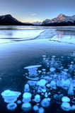 Abraham Lake Winter Images libres de droits