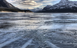Abraham Lake Winter Arkivfoton