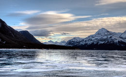 Abraham Lake Winter Royaltyfri Foto