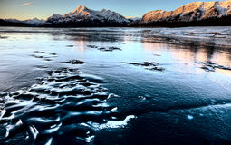 Abraham Lake Winter Stock Photos