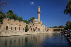 Abraham's Pool in Şanlıurfa Royalty Free Stock Images