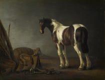 Abraham van Calraet - um cavalo com uma sela ao lado dela foto de stock royalty free