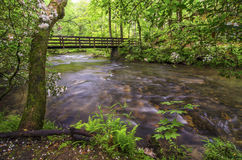 Abrams creek, spring, Cades Cove Stock Photography