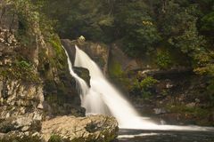 Abrams falls. In the Smoky Mountains Royalty Free Stock Photography