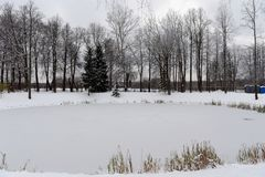 Winter pond in the museum-reserve Abramtsevo. Moscow region. Sergiev Posad district. ABRAMTSEVO, RUSSIA - NOVEMBER 6, 2016: Winter pond in the museum-reserve stock image