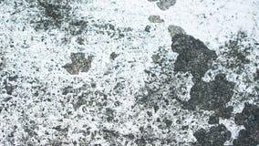 Abrasión blanca del color de la pared fotos de archivo libres de regalías