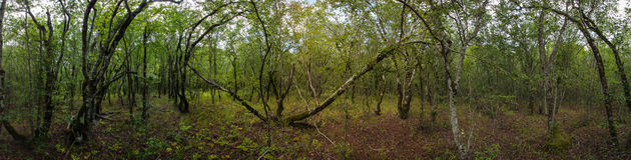 Abrau-Halbinsel, Reserve Utrish Lizenzfreie Stockbilder