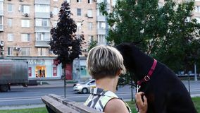Abrazo de la mujer adulta con su perro negro grande metrajes