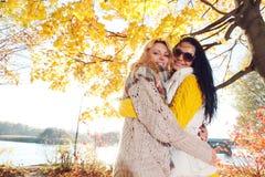 Abrazo de las mujeres en parque del otoño Imagen de archivo