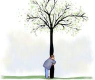Abrazo del árbol Fotografía de archivo