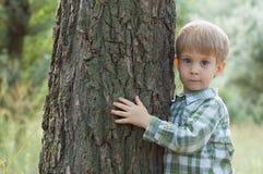 Abrazo del niño pequeño un árbol Fotografía de archivo libre de regalías
