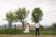 Abrazo encantador de la novia su novio hermoso en montañas Paseo hermoso de los pares de la boda Gackground verde fotos de archivo