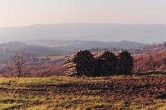 Abre una sesión el campo en Toscana imagen de archivo