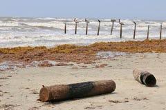 Abre una sesión la playa Imágenes de archivo libres de regalías
