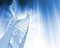 Abrégé sur brin d'ADN Image stock