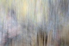 Abrégé sur tache floue de mouvement de nature Photographie stock libre de droits