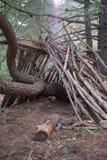 Abri dans la forêt Photographie stock