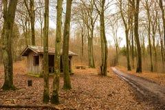 Abri en bois dans une forêt Image libre de droits