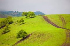 Abricó Vally Imagem de Stock