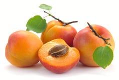 Abricot avec des feuilles Photos stock