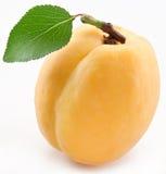 Abricot avec la lame sur un fond blanc. Images libres de droits