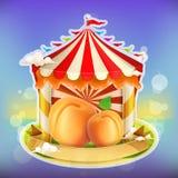 Abricot d'affiche de confiture de fruit illustration de vecteur