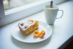 Abricot de tarte Photographie stock