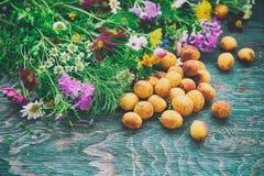 Abricot et fleurs Photos libres de droits