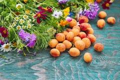 Abricot et fleurs Image stock