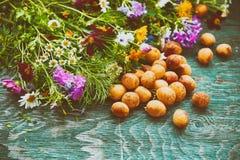 Abricot et fleurs Photo libre de droits