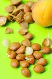Abricot et piqûres image stock