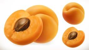 abricot Icône de vecteur du fruit frais 3d illustration stock