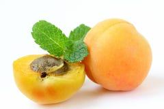 Abricot juteux mûr de fruit photographie stock