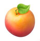 Abricot mûr avec la feuille d'isolement sur un fond blanc Photos stock