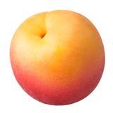 Abricot mûr d'isolement sur un fond blanc Image libre de droits