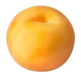 Abricot mûr d'isolement sur un fond blanc Photos libres de droits