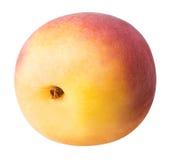 Abricot mûr d'isolement sur un fond blanc Photo libre de droits