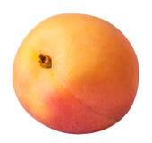 Abricot mûr d'isolement sur un fond blanc Photographie stock libre de droits
