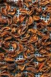 Abricot sec dans le dessiccateur-déshydrateur Une manière de préserver la vitamine photo stock