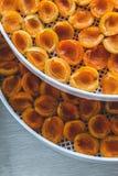 Abricot sec dans le dessiccateur-déshydrateur Une manière de préserver la vitamine images stock