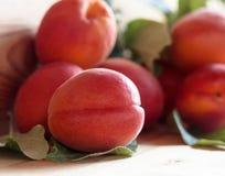 Abricots avec des feuilles sur une table en bois Photographie stock libre de droits