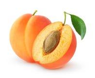 Abricots d'isolement de coupe Photographie stock libre de droits