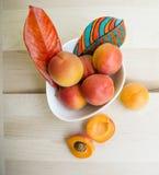 Abricots dans la cuvette blanche avec la version carrée de feuilles peintes à la main Photographie stock