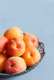 Abricots dans une cuvette sur le fond concret photographie stock libre de droits